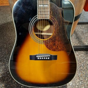 acoustic guitar hummingbird artist
